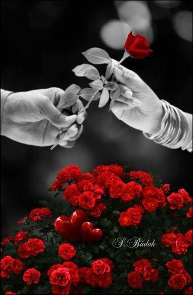 """Quelle chanson de Barbara se termine par """"Je veux que tranquille il repose, je l'ai couché dessous les roses, mon père, mon père..."""" ?"""