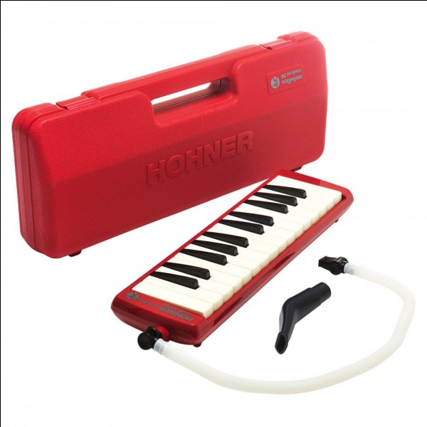 Quel est ce petit instrument semblable au piano ?