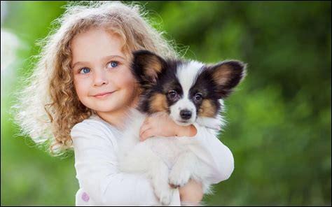 Le chien est la première espèce animale à avoir été domestiquée par l'homme.