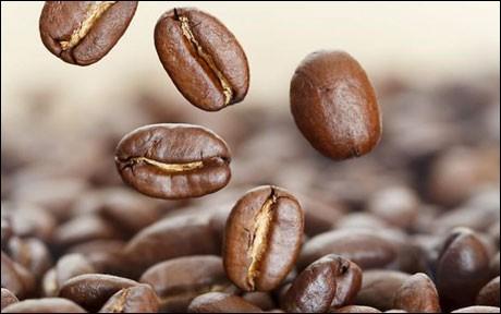 La caféine permet...