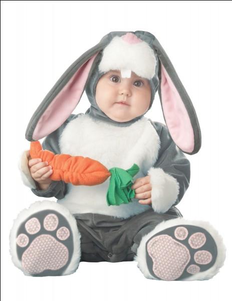 Un lapin, une ...