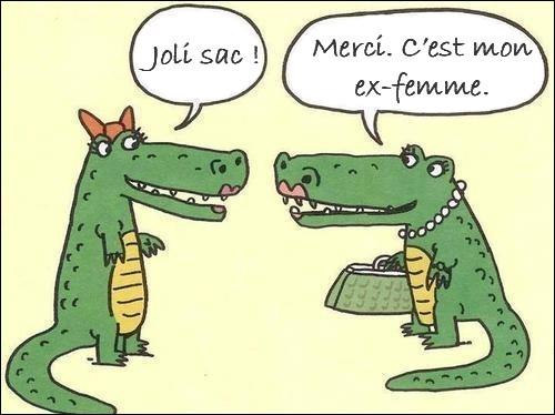 Vous piéger sur la langue française, c'est ma manière à moi de tester...