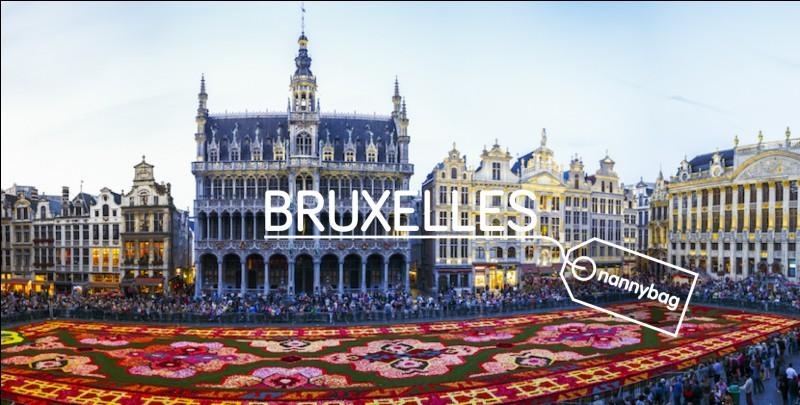 Combien d'habitants compte la ville de Bruxelles ? (avril 2018)
