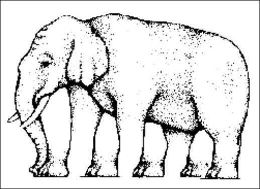 Combien de pattes possède cet éléphant ?