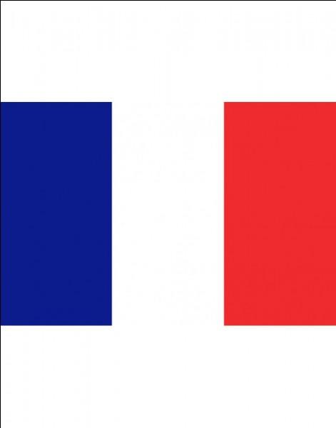 De quelle couleur est ce drapeau et de quel pays est-il ?