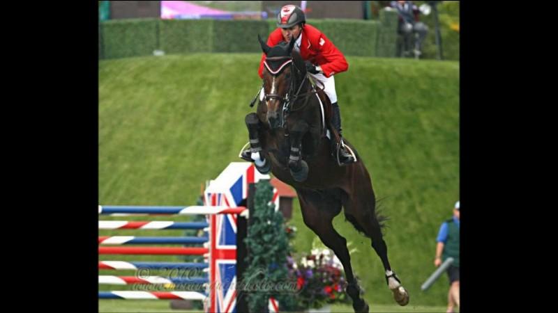 """Ce cheval est mort en 2011 à la sortie de piste de la compétition à laquelle il prenait part, je veux parler du cheval que l'on considérait comme """"le meilleur cheval du XXIe siècle"""" c'est de Hickstead que je parle, alors dans quelle discipline était il considéré comme le meilleur ?"""