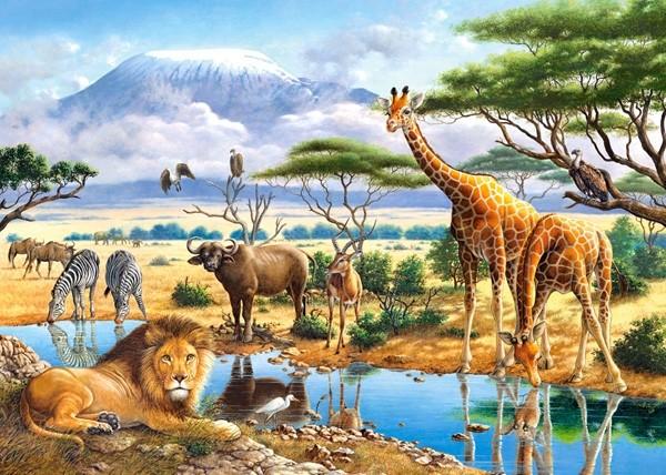Culture générale autour des animaux de la savane (1)