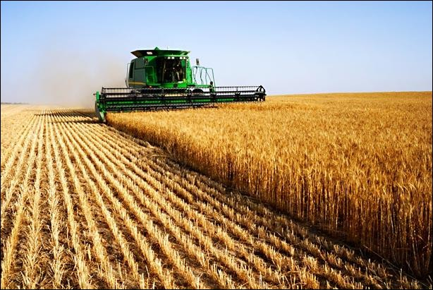 """Comment traduit-on """"agriculture"""" ?"""