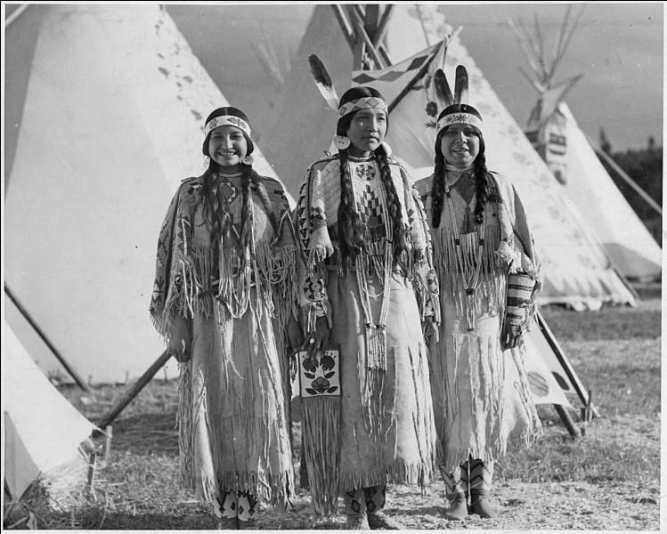 Où les Nez-Percés vivaient-ils au XIXe siècle ?