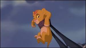 Quel animal est Simba ?