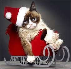 Comment appelle-t-on un chat tombé dans un pot de peinture le jour de Noël ?