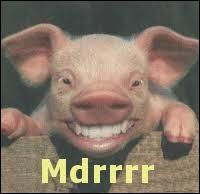 Qu'est qu'un cochon qui rit ?