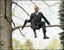 Qu'est-ce qu'un homme sur une branche ?