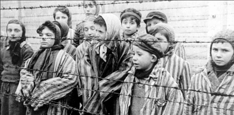 En quelle année les premiers camps de concentration furent-ils ouverts ?