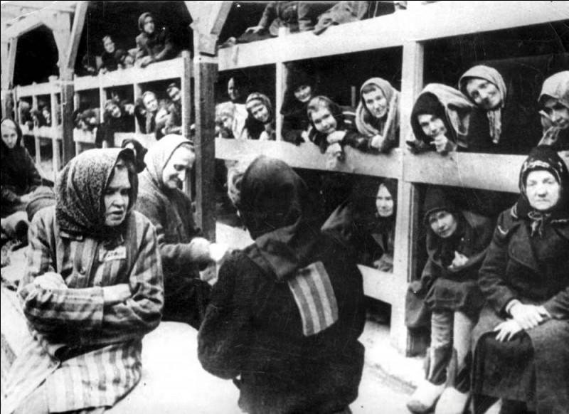 Lequel de ces camps était réservé en 1941 aux prisonniers ayant une conscience chargée mais qui ont une possibilité de se rééduquer l'âme ?