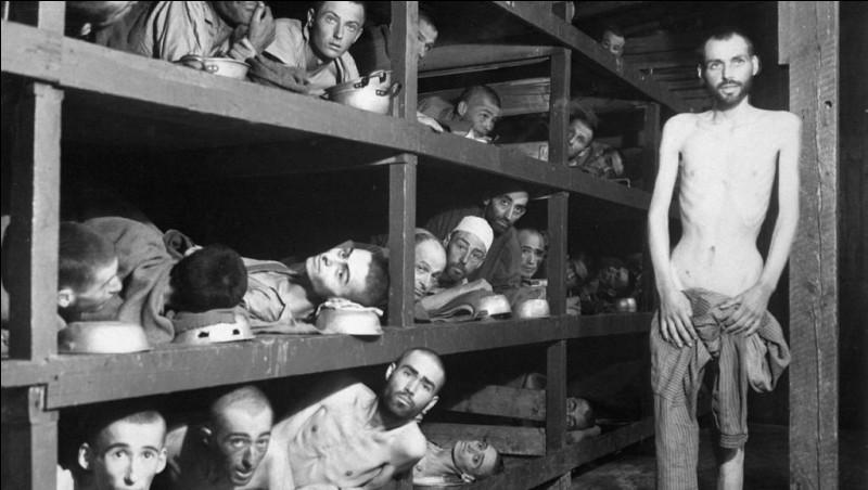 Quelles furent les premières victimes des camps de concentration ?