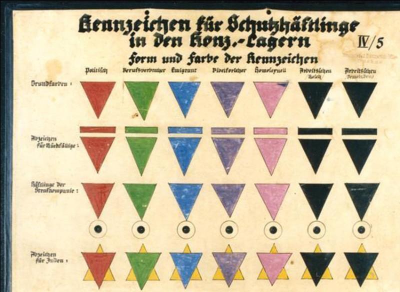 Quelle couleur désignait les homosexuels prisonniers des camps ?