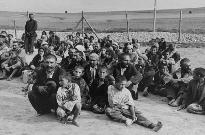 Quels prisonniers internait-on dans la Zigeunerfamilienlager ?