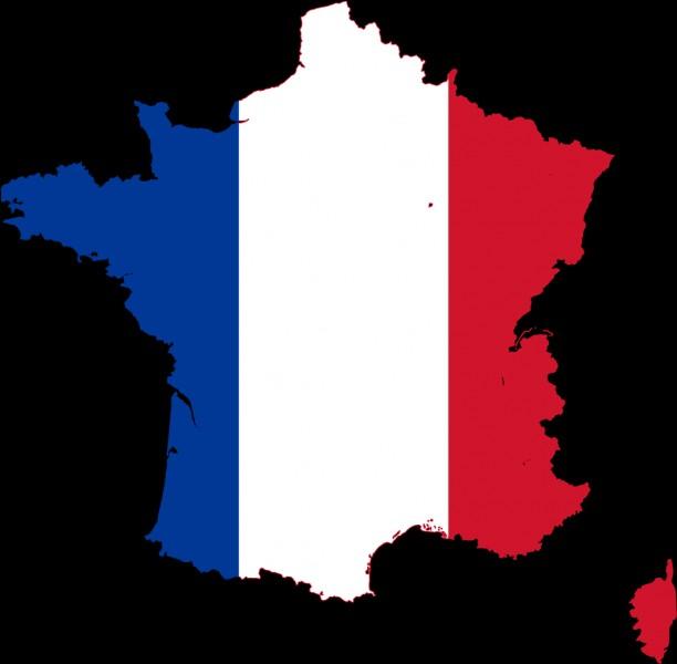 Il n'y a qu'une seule langue officielle en France, le français.