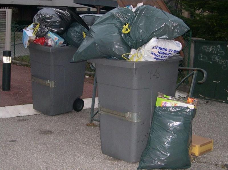 Les poubelles tirent leur nom de celui qui les a inventées, Eugène Poubelle.