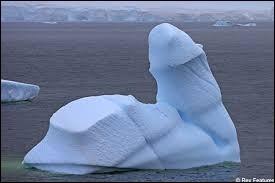 Un iceberg vient d'être papa. Comment l'annonce-t-il à ses amis ?