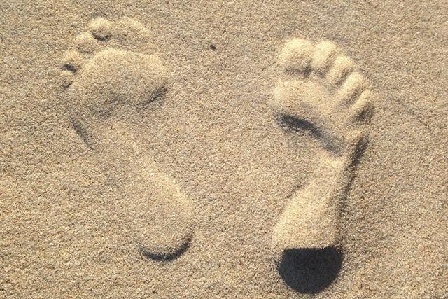 Quelques pieds de là