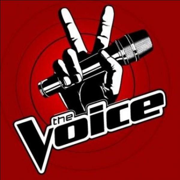 """Et aimes-tu """"The Voice"""" ?"""