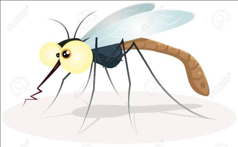 Seules les femelles moustiques piquent, pas les mâles.