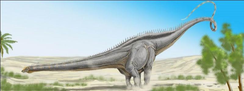 Lequel de ces genres de diplodocus a existé ?
