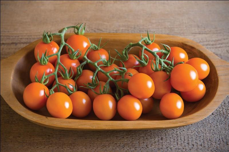 Dernière question : comment s'appelle la race hybride de la mandarine et de l'orange ?