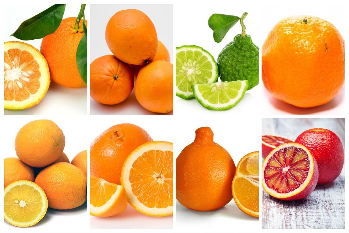 L'orange dans tous ses états !