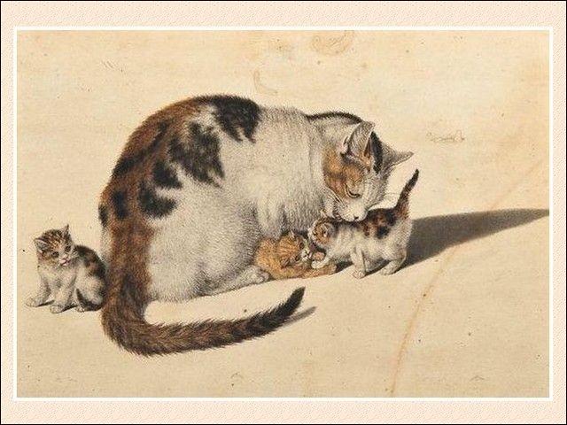 Quel artiste peintre autiste suisse est surnommé le ''Raphaël des chats'' pour son talent à peindre cet animal ?