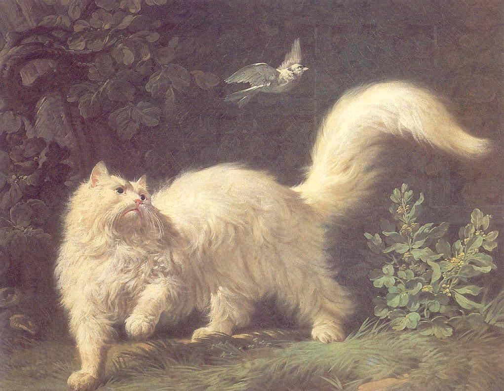 Le chat au bout du pinceau (2)