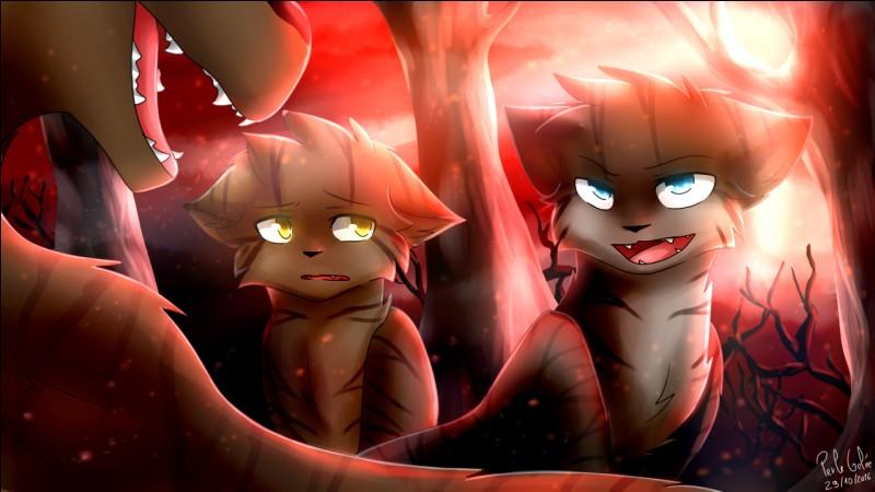 Dans la Forêt Sombre, les chats qui viennent de mourir et qui doivent y aller apparaissent dans une flaque de boue.