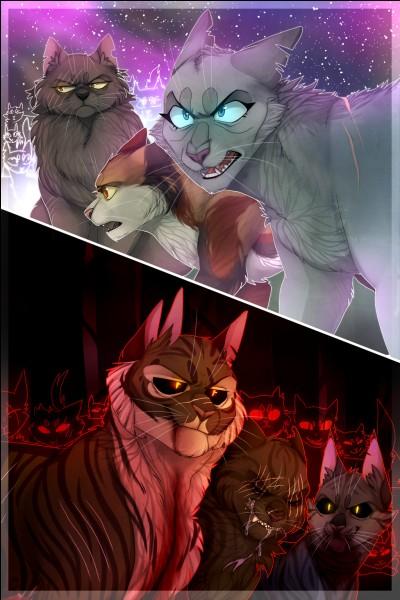 Un chat du clan des Étoiles ne peut pas aller dans la Forêt Sombre.