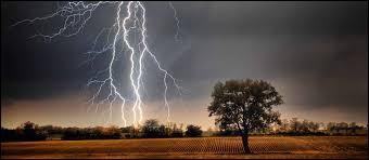 Vrai ou faux : sur cette image, le meilleur moyen de se protéger de l'orage, est de se cacher sous l'arbre à droite.