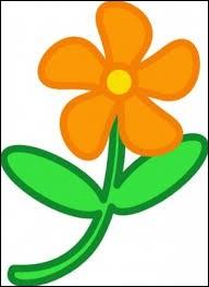 Cette plante à fleurs jaunes ou oranges porte le nom botanique de Calendula officinalis. Sous quel nom la connaît-on mieux ?