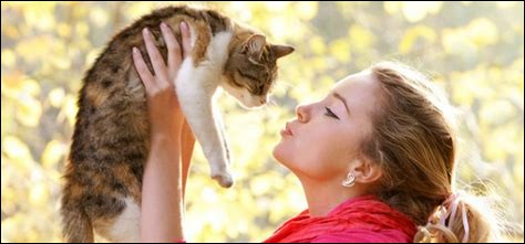 Les chats ressentent nos émotions.