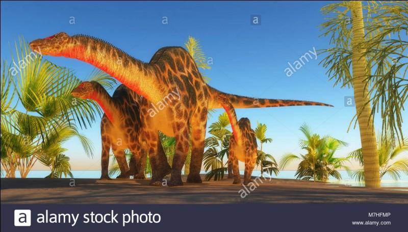 Quel était le plus grand Sauropode ?