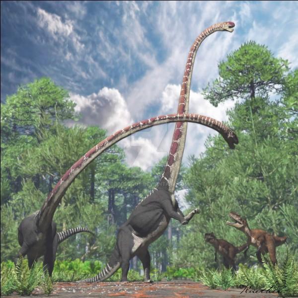 Quel était le dinosaure au plus long cou ?