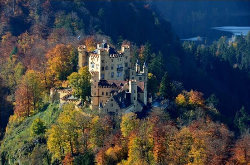 Le père de Louis II, Maximilien II, prince héritier de Bavière, a fait construire ce château gothique à partir de 1832 : c'était la résidence royale d'été, Louis II y passa une partie de son enfance.