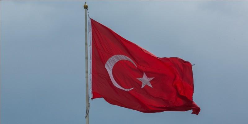 Un attentat dans une discothèque à Istanbul fait 39 morts et 65 blessés. Dans quel pays était-ce ?