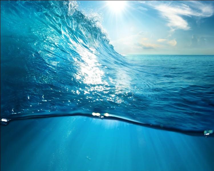 Quand on est en Roumanie, dans quelle mer peut-on se baigner ?