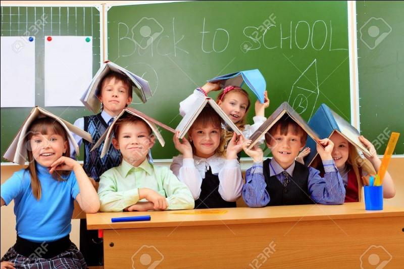 Quel est le statut d'un professeur des écoles actif de l'enseignement public. ?