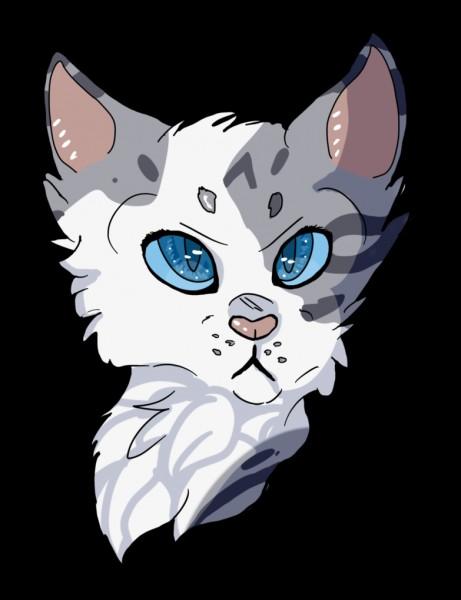 Quel était son nom lorsqu'elle était chaton ?