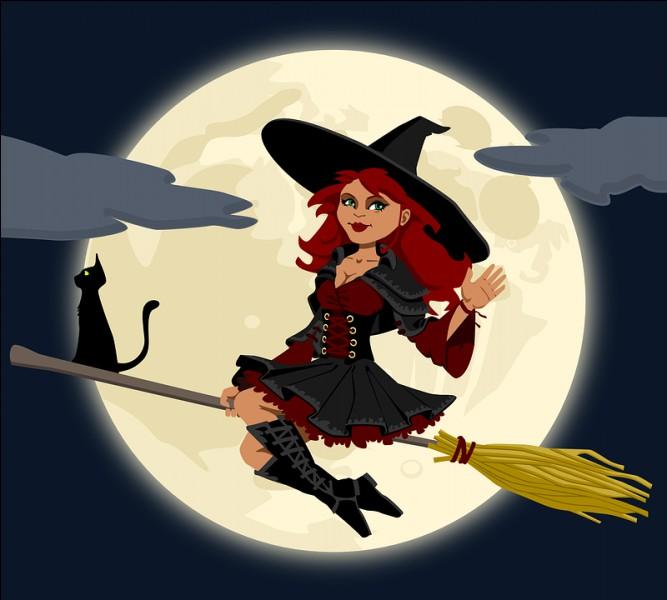Je suis le mari de la sorcière.