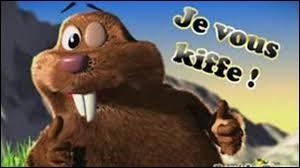 Complétez ces paroles de René la taupe : ''T'eeesss siiiiii miiiignon, mignon, mignon, mignon mais ----------------''