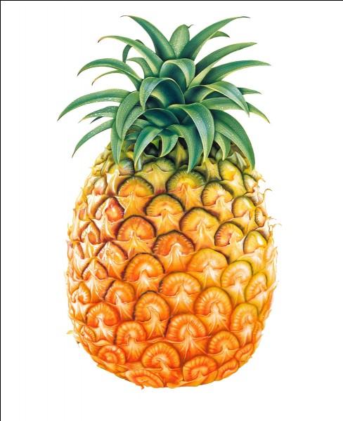 """Quelle est la traduction du mot """"ananas"""" ?"""