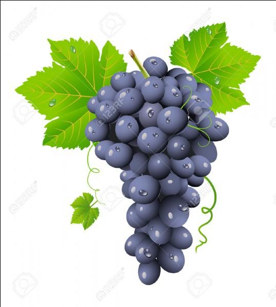 """Quelle est la traduction du mot """"raisins"""" ?"""