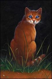 Qui est cette chatte brune ?
